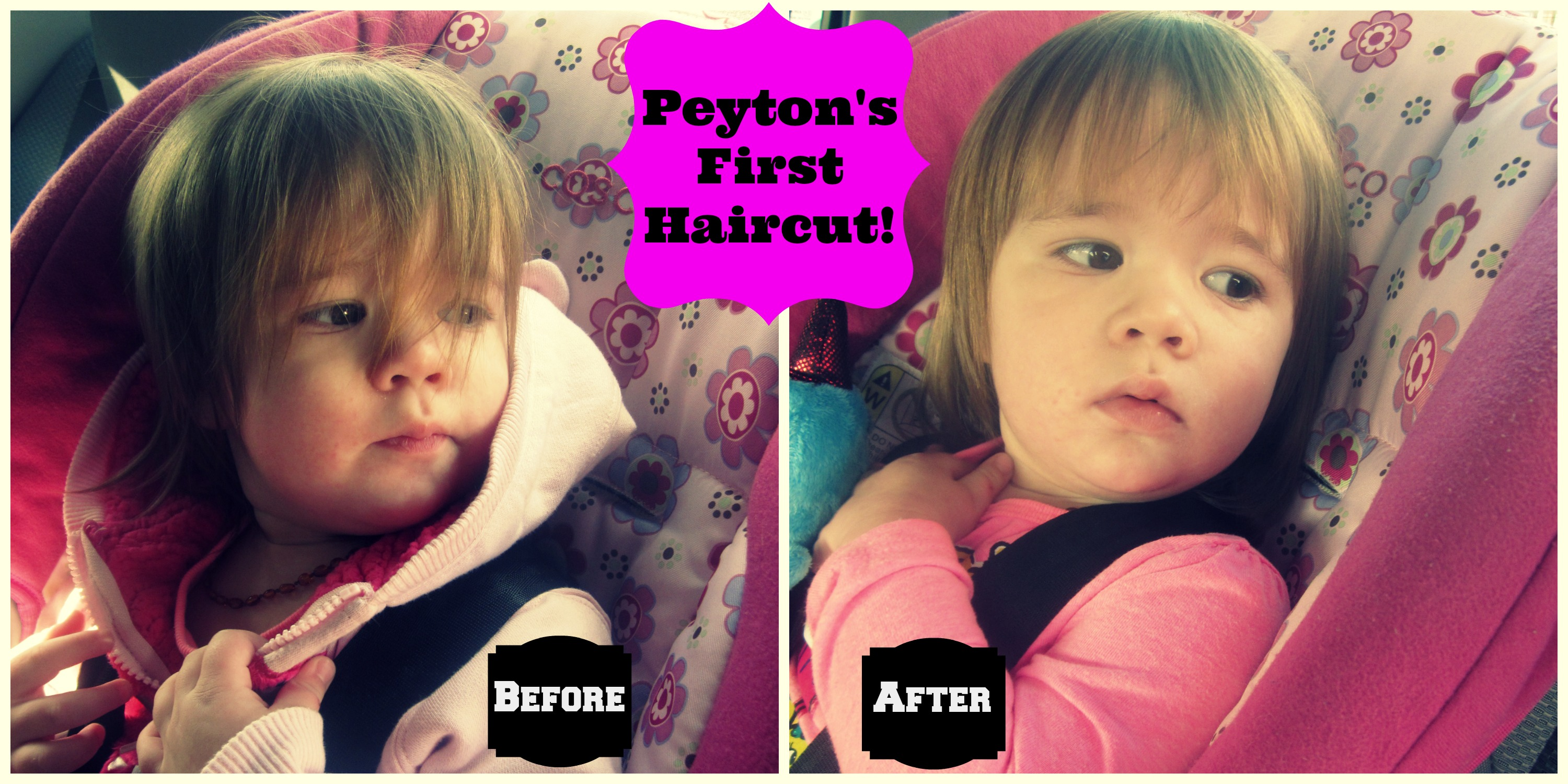Punkys First Haircut Confessions Of A None